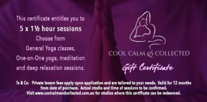 Gift Certificate – 5 x 1½ hour sessions